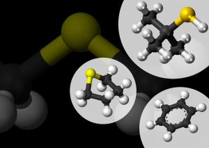 SPECTRA spotlighted on Applied Spectroscopy